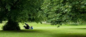 picnic-380657_1920